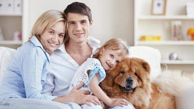 Wills & Trusts dog-young-family Direct Wills Queens Park